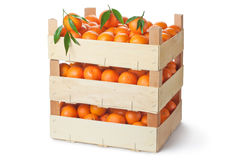 Three retail crates of ripe tangerines Royalty Free Stock Images