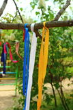 Three ribbons on a branch. Tied on a tree branch on a branch three tapes: blue, white, pink Royalty Free Stock Photo