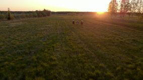 Three riders gallop ingerwhile against the backdrop of the sunset