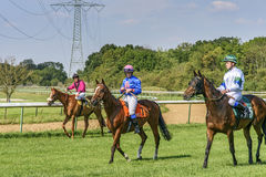 Three riders on horseback. Pleasure step. Hippodrome in Magdeburg Germany August 2015. Racing on the racetrack Royalty Free Stock Images