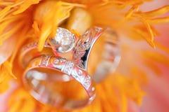 Wedding rings in flower stock image