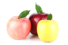 Three Ripe Apples Stock Photography