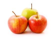Three ripe apples isolated royalty free stock photo
