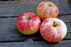 Three ripe apples on a rustic gray boards Stock Photography