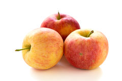 Three ripe apples. Royalty Free Stock Image