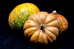 Three ripe bright assorted pumpkins on a black background. 3 ripe bright assorted pumpkins on a black background Stock Photo
