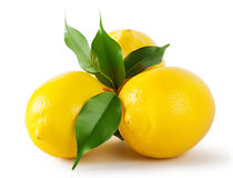 Three ripe bright lemon Royalty Free Stock Images