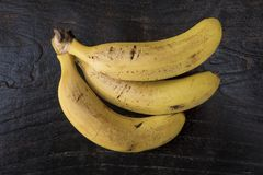 Three ripe Cavendish bananas with small bruises positioned on a wooden brown table. Horizontal shot of ripe bananas, a healthy super fruit popular for its fiber stock photography