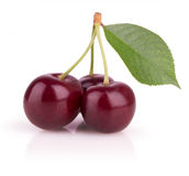 Three ripe cherries Stock Photos