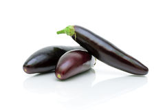 Eggplant on a white background close-up Royalty Free Stock Photo