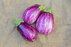 Three ripe eggplants on a sacking background Royalty Free Stock Photography