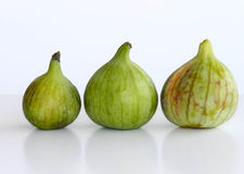 Three ripe figs. Freshly picked ripe green figs  isolated on white Stock Images
