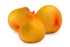 Three Ripe fruit of pomelo in package Royalty Free Stock Image