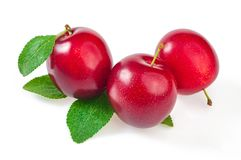Three ripe fruits, red plums with leaves, close up. On white. royalty free stock photography
