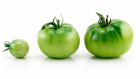 Three Ripe Green Tomatoes in Row Isolated on White Stock Images