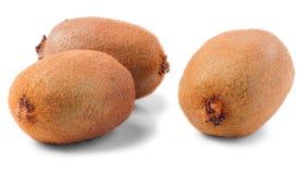 Three ripe kiwi. Stock Images