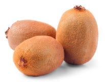 Three ripe kiwi. Royalty Free Stock Images