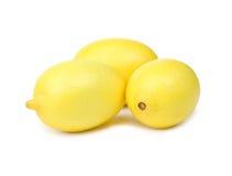 Three ripe lemons. On white background stock image