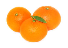 Three ripe mandarins on white background Royalty Free Stock Photography