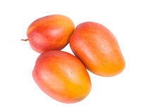 Three Ripe mango fruit Royalty Free Stock Image