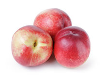 Three ripe nectarines Stock Photos
