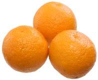 Three ripe oranges Royalty Free Stock Image
