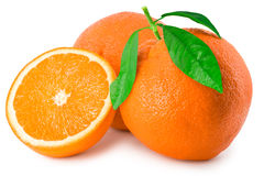 Three ripe oranges on white. Three wonderful juicy ripe orange. One of them with a twig and leafs stock images