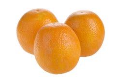 Three ripe oranges Royalty Free Stock Images
