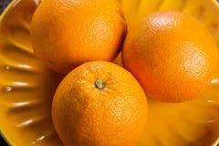 Three ripe oranges Stock Photos