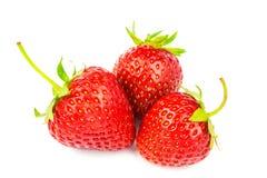 Three ripe, organic strawberry isolated on white background. Royalty Free Stock Photography