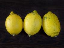 Three ripe organinc lemons Stock Photo