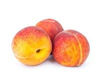 Three ripe peach Royalty Free Stock Image