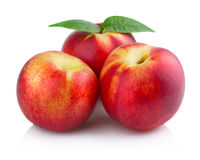 Three ripe peach (nectarine) fruits isolated Royalty Free Stock Images