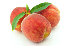 Three ripe peaches Royalty Free Stock Photography