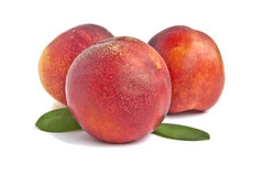 Three ripe peaches. Peaches isolated on white background Royalty Free Stock Images