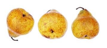Three ripe pear Royalty Free Stock Image