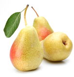 Three ripe pears. Royalty Free Stock Photo