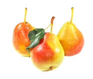 Three ripe pears Royalty Free Stock Image