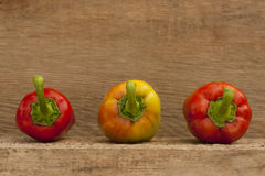 Three ripe pepper. Front veiw of three ripe pepper vegetables on wooden background Stock Images
