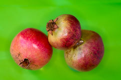 Three ripe pomegranates on a green background Royalty Free Stock Images