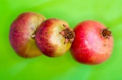 Three ripe pomegranates on a green background Stock Image