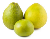 Three ripe pomelos Royalty Free Stock Images