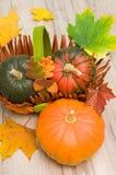 Three ripe pumpkin close-up Stock Images