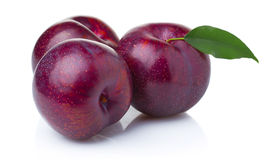 Three ripe purple plum fruits with green leaves. On white background stock photo