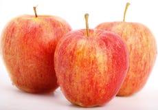 Three ripe red apples Stock Photo