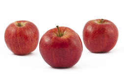 Three ripe red apples on white Stock Images