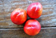 Three ripe red nectarines on rustic wooden table Royalty Free Stock Photo