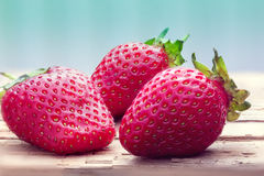 Three ripe red strawberries Royalty Free Stock Images