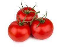 Three ripe red tomatoes on branch Royalty Free Stock Image