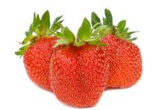 Three ripe strawberries Stock Images